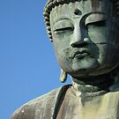 The face of meditation by Joumana Medlej