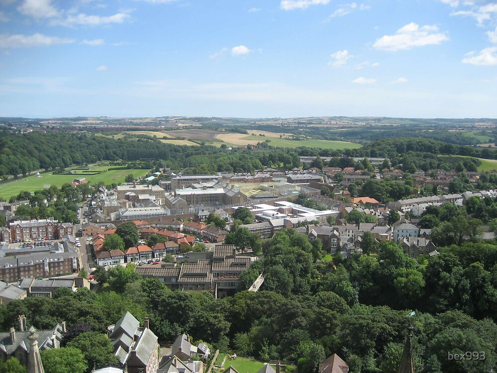 View from Durham Catherdral by bex993
