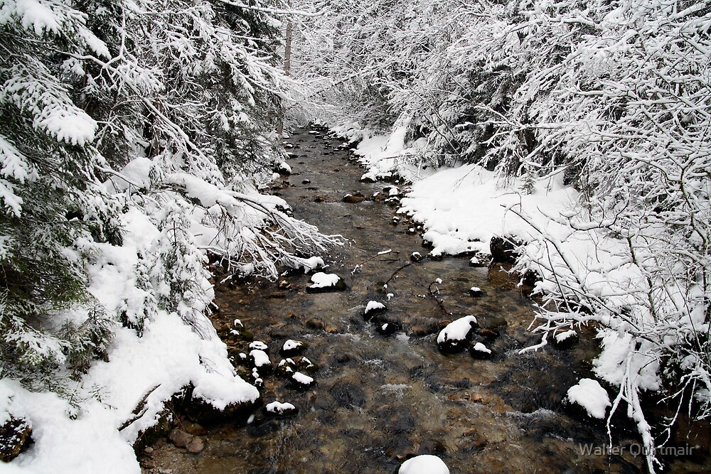 Deep Winter by Walter Quirtmair