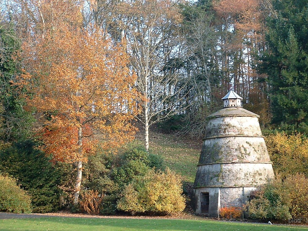 Dovecote by blod