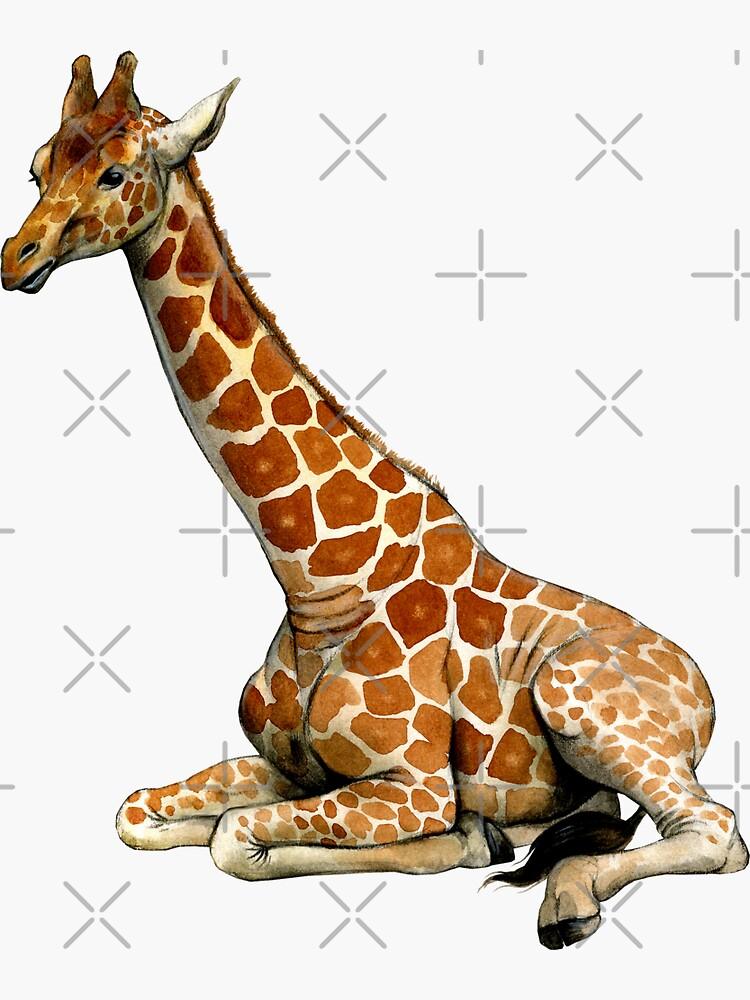 Ruhende Giraffe von antarcticpip