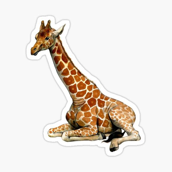 Resting Giraffe Sticker