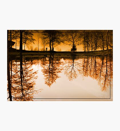 Dream of the trees Photographic Print