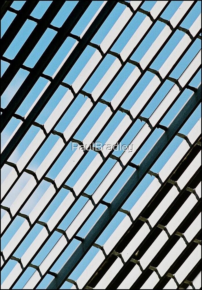 Grid by PaulBradley