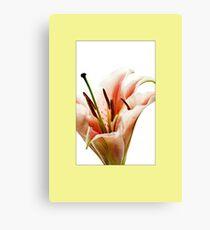 ENCORE Canvas Print