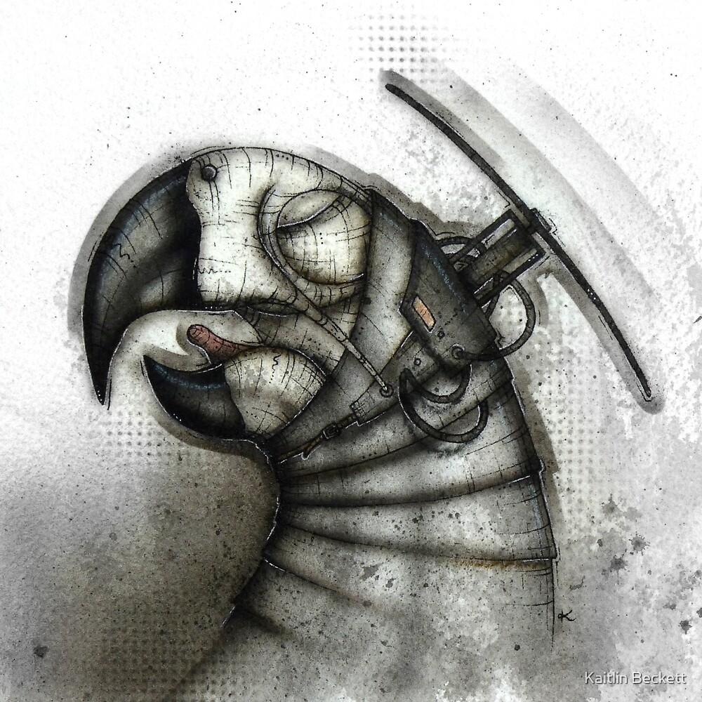 Heliparrot by Kaitlin Beckett