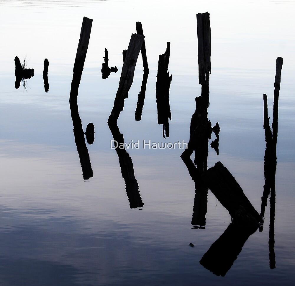 Poles Apart by David Haworth
