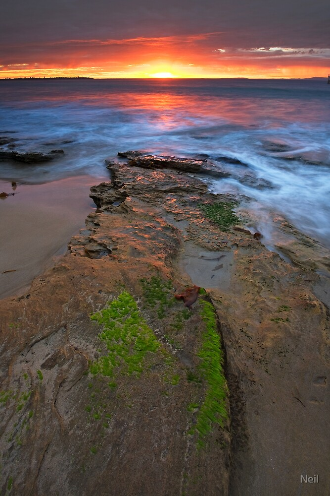 Here Comes the Sun by Neil