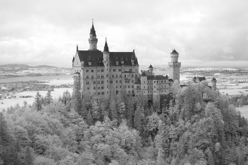 Neuschwanstein Castle by Trent Wallis
