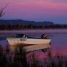 Mauve Tones, Lake Fyans by Joe Mortelliti