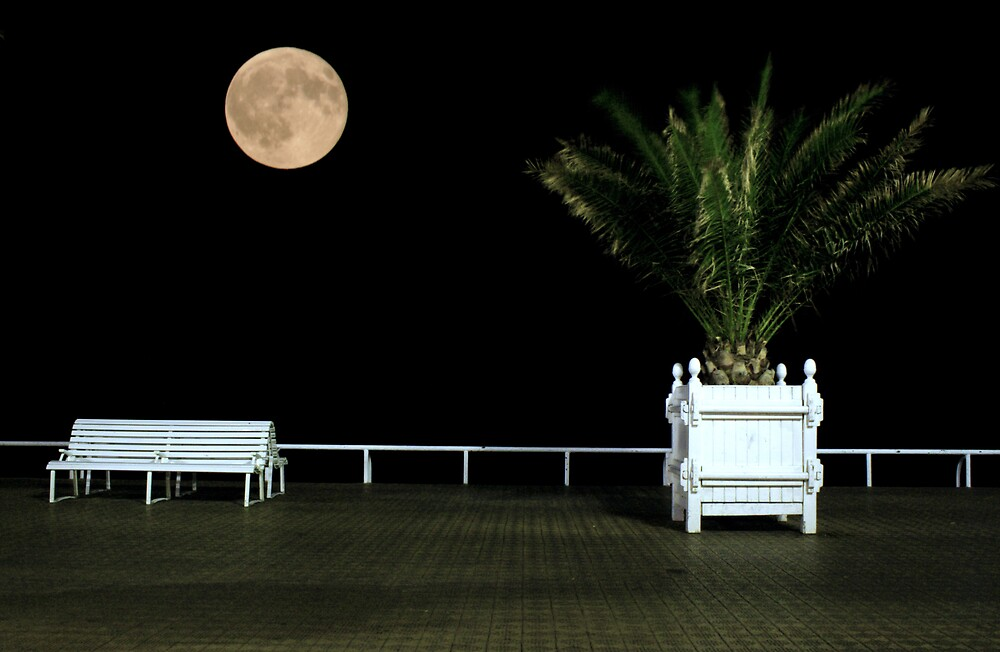 By the light of the Silvery Moon by Adrian Richardson