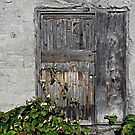 Dilapidated Door by Ethna Gillespie