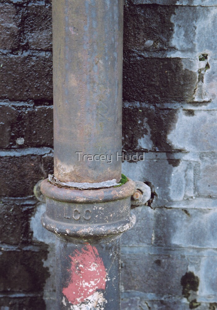 Drain pipe by Tracey Hudd