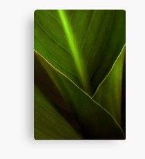 FUNNEL OF LIGHT Canvas Print