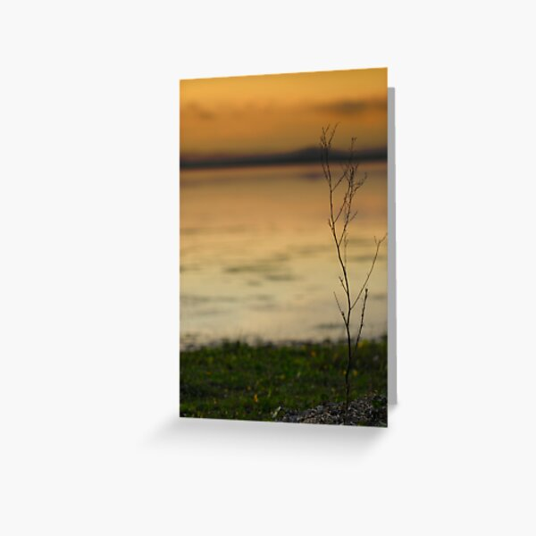@ the waters edge Greeting Card