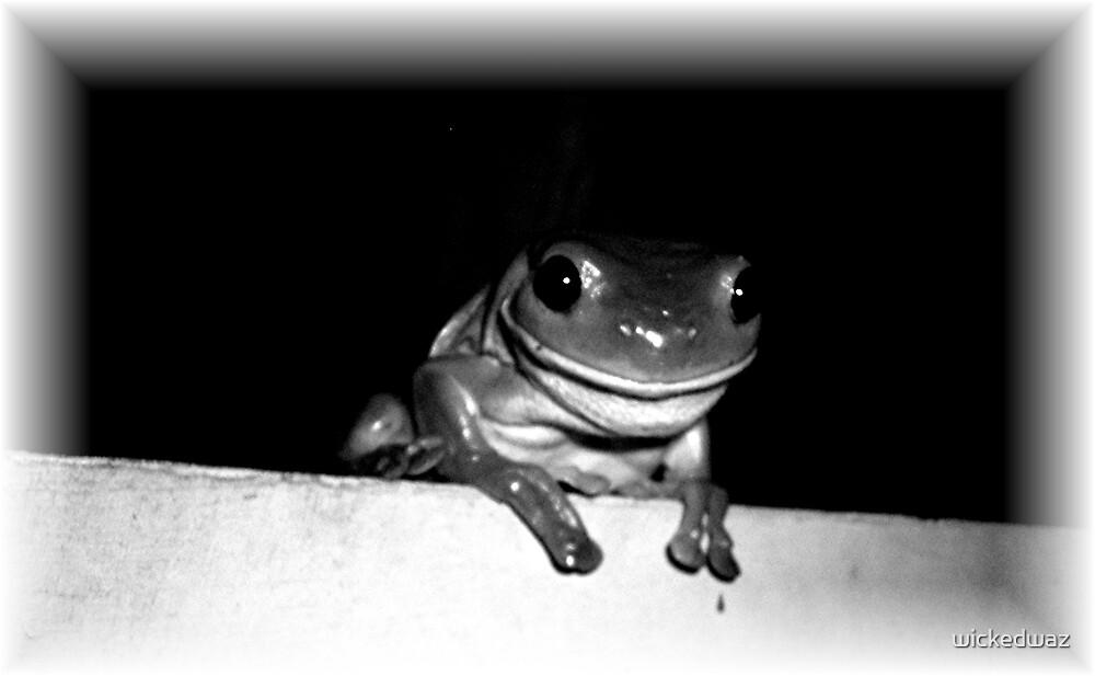 Happy Frog by wickedwaz