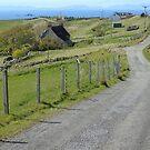 Winding road by jmnicolson