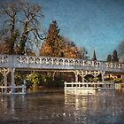 The Toll Bridge At Whitchurch by IanWL