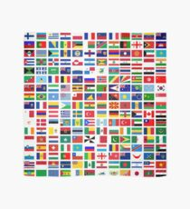 Flags of the world Scarf