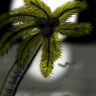 Tropical Nights  by Charldia