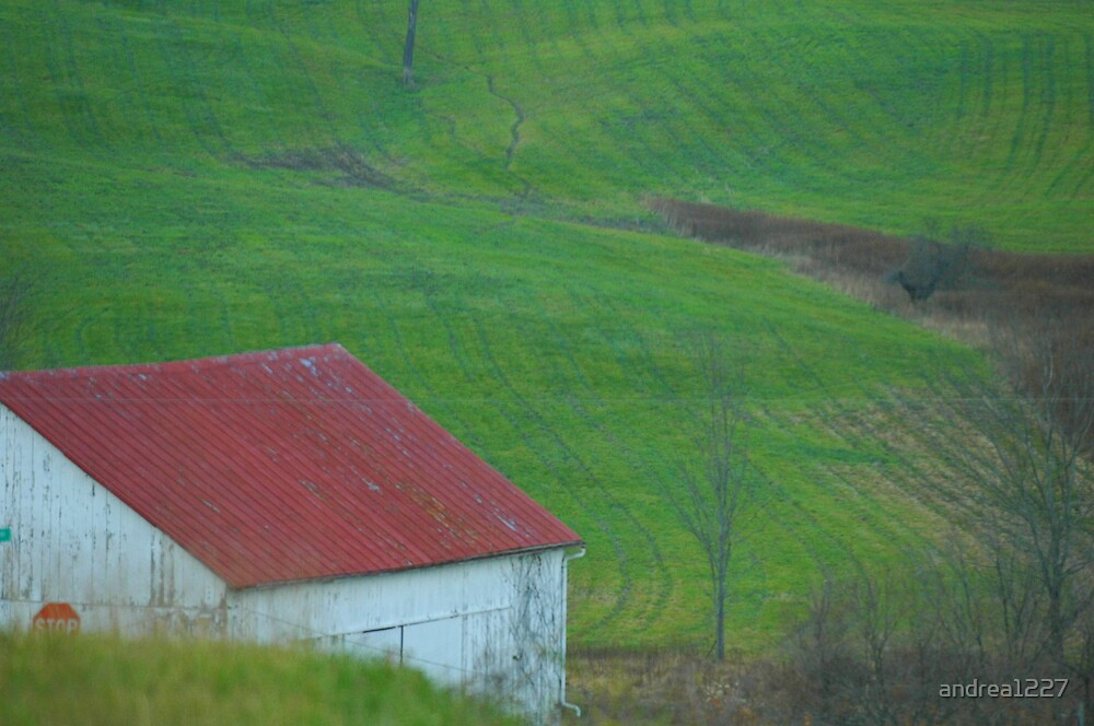 Green Acres by andrea1227