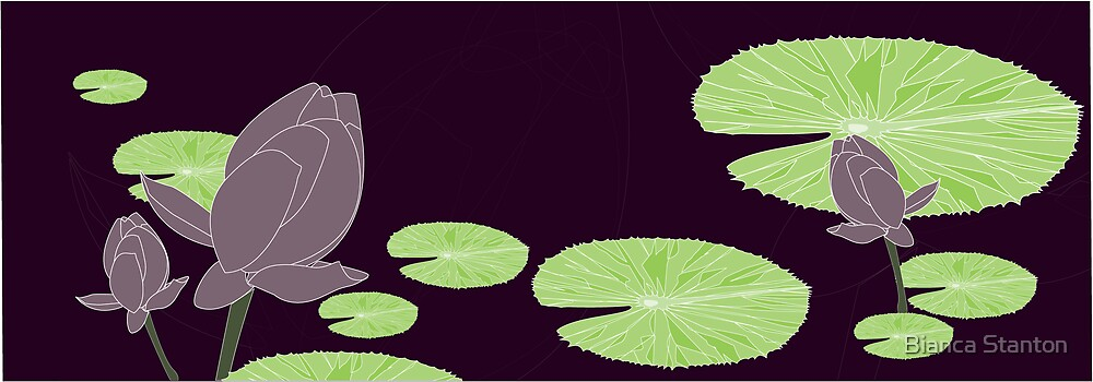 waterlily purple by marbia