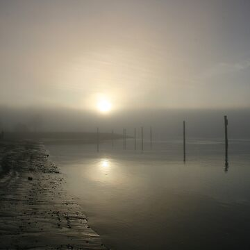 Misty shoreline by Clairearmistead