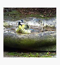 Backstroke Technique ! Photographic Print