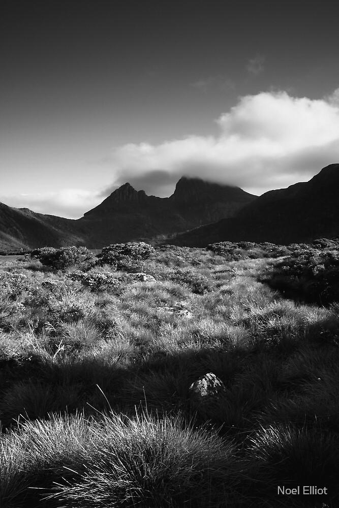Cradle Mountain - Spring by Noel Elliot