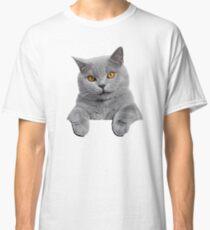 British Shorthair Cat Classic T-Shirt
