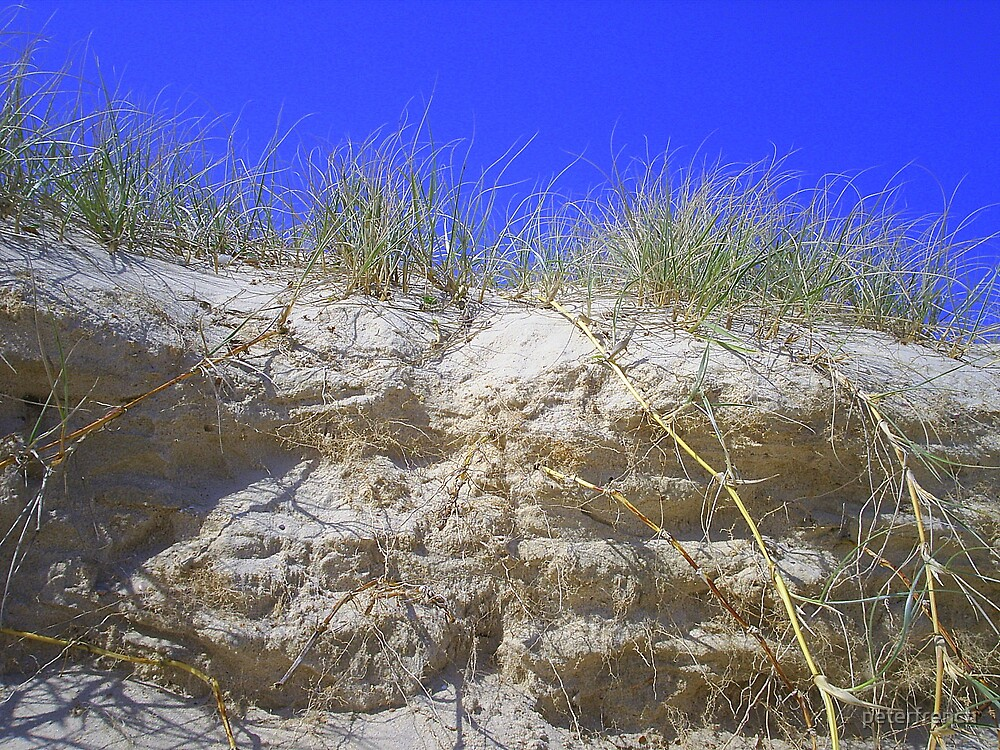 sand hills by peterfrench