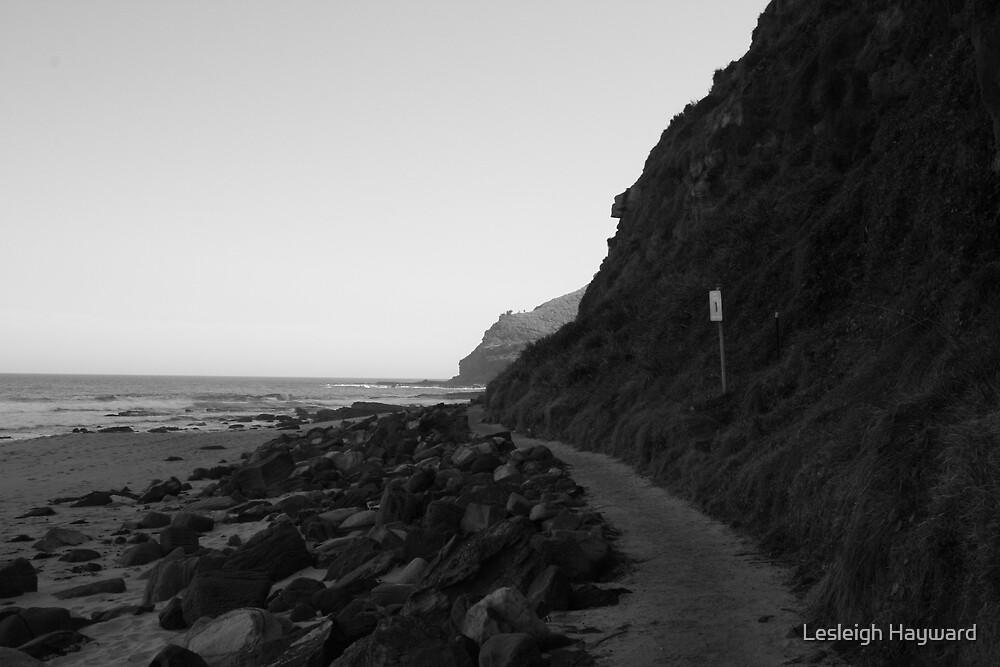 peaceful beach by Lesleigh Hayward