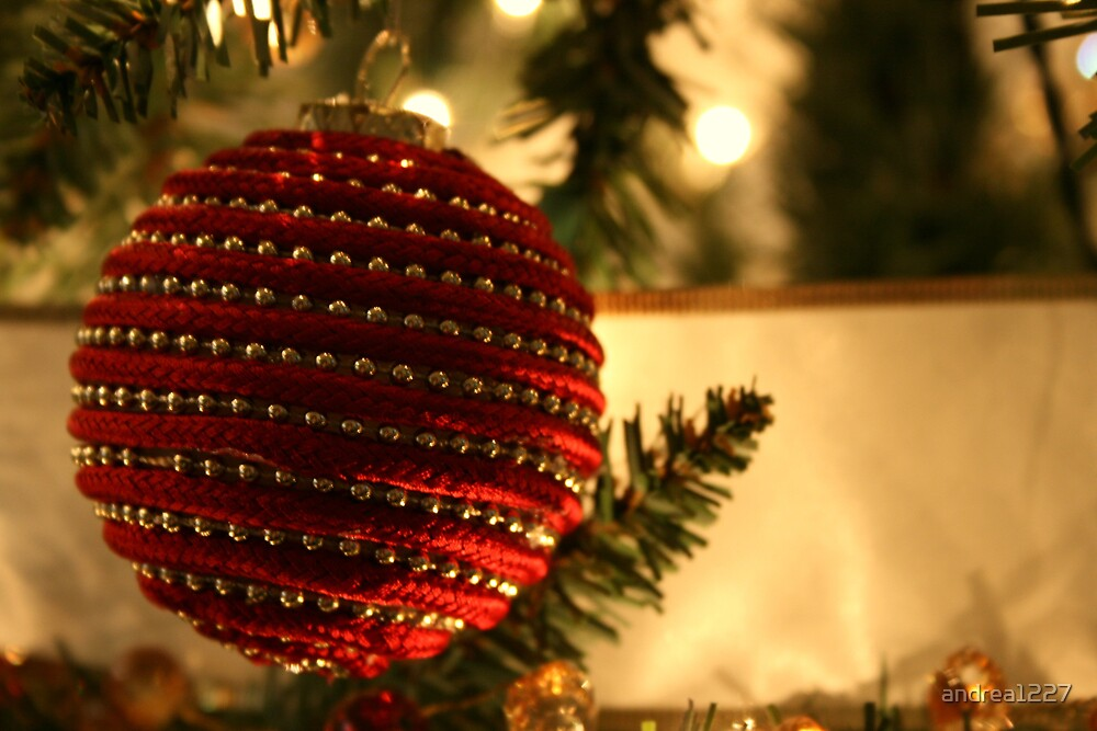 Ornament by andrea1227