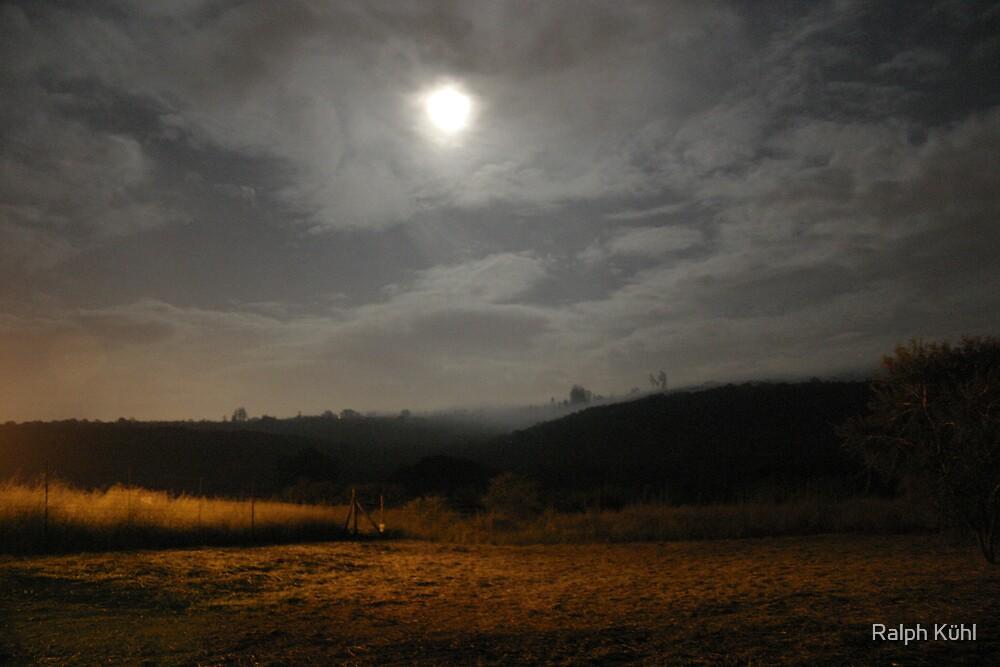 Beauty Of The Night 1 by Ralph Kühl
