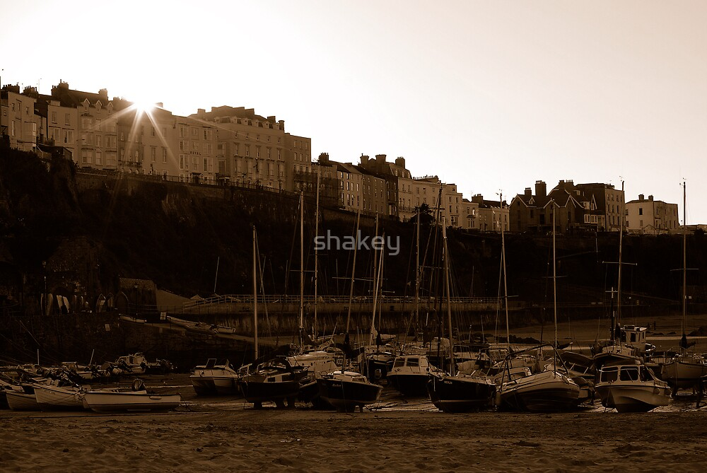 Sepia sunset by shakey