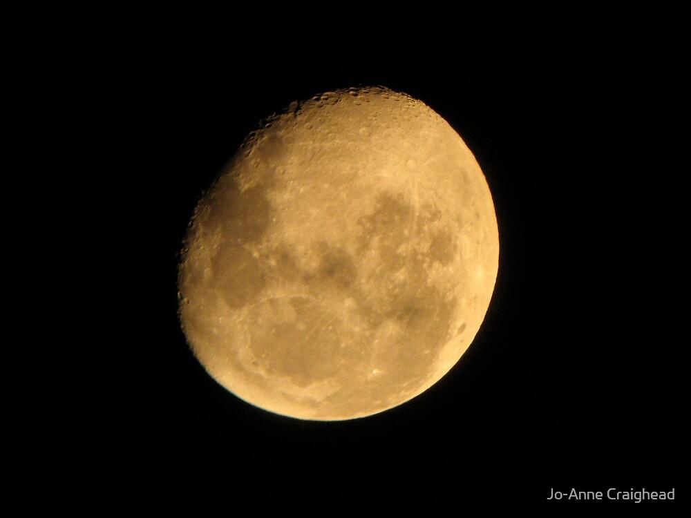 Moon Lighting by Jo-Anne Craighead