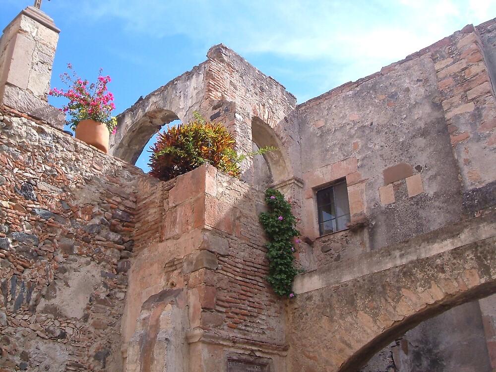 Old Mexico by lucio della ratta