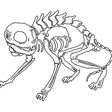 Cat Skeleton by NomadicPlanet
