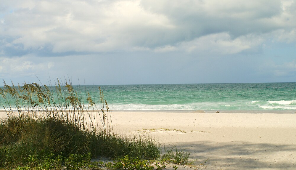 Longboat Key, FL by blacroix