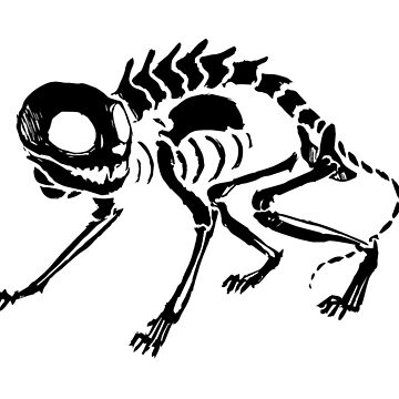 Black Skeleton Cat by NomadicPlanet