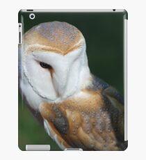 Casper - 003 iPad Case/Skin