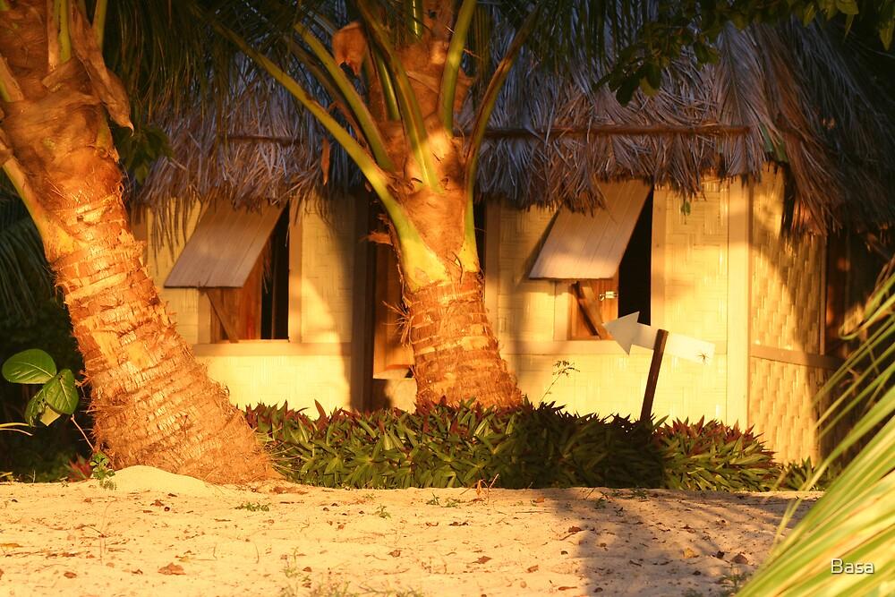 Fiji Island Sunrise by Basa