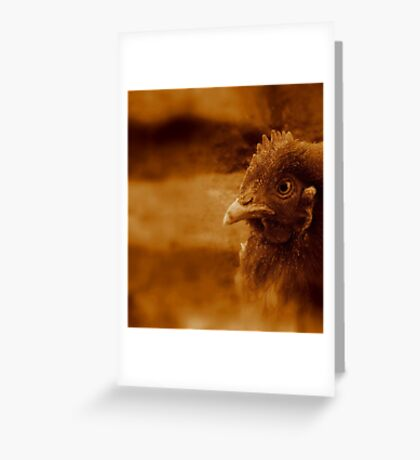 Chicken Dream Greeting Card