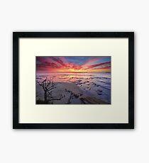 Sunrise Plantation Point Jervis Bay Vincentia Framed Print