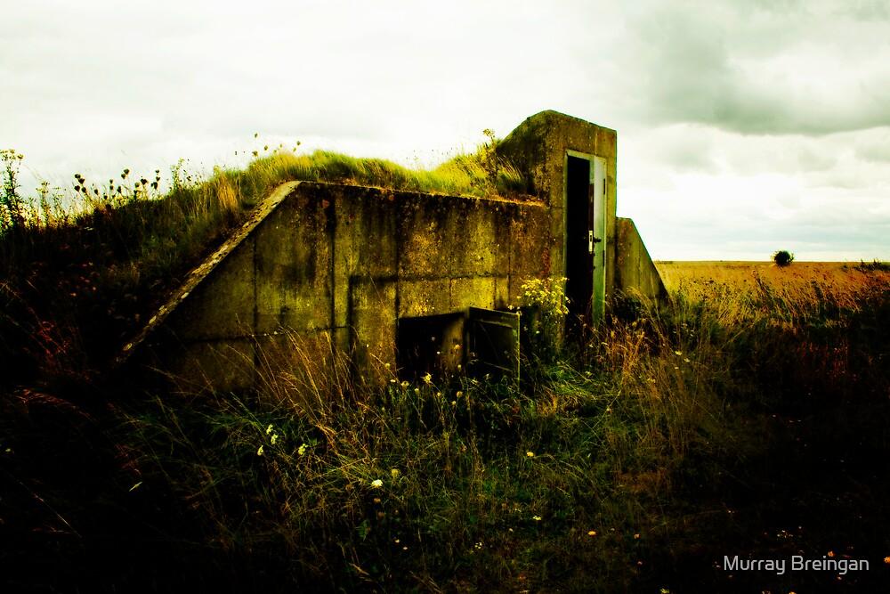 bunker by Murray Breingan