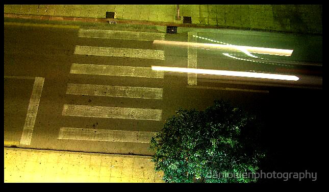 lights by daniowenphotography