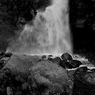 Waterfall II by Ashley Ng