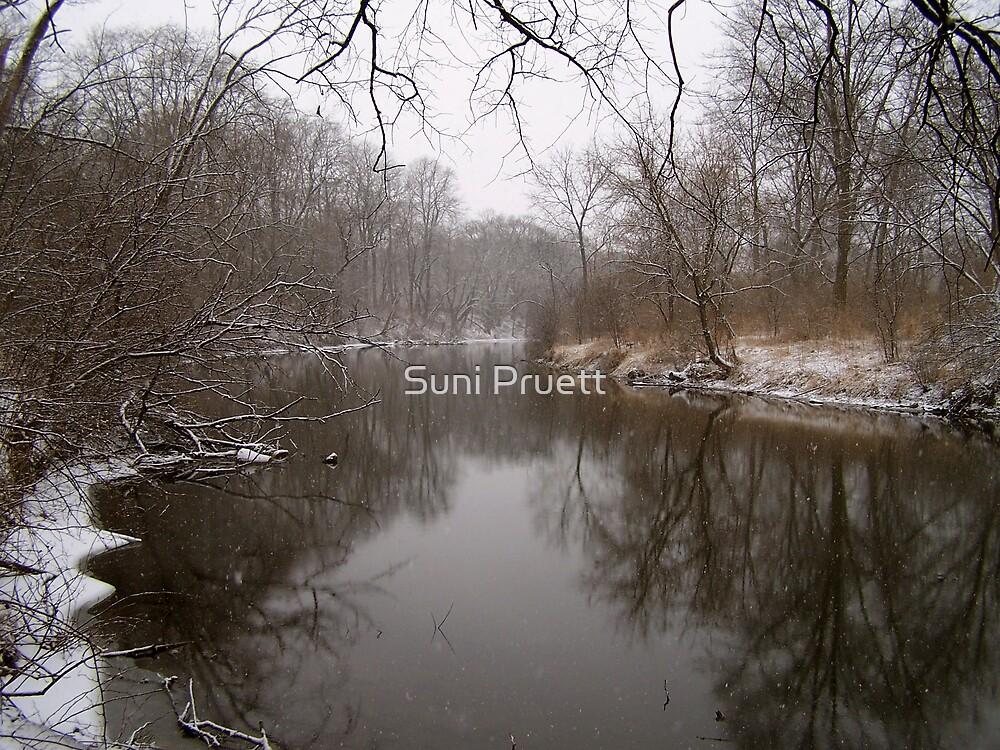 Winter In Illinois by Suni Pruett