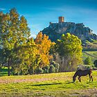 Horse and Castle - Belmez by Ralph Goldsmith
