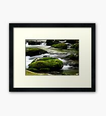 Mossy River Rocks Framed Print